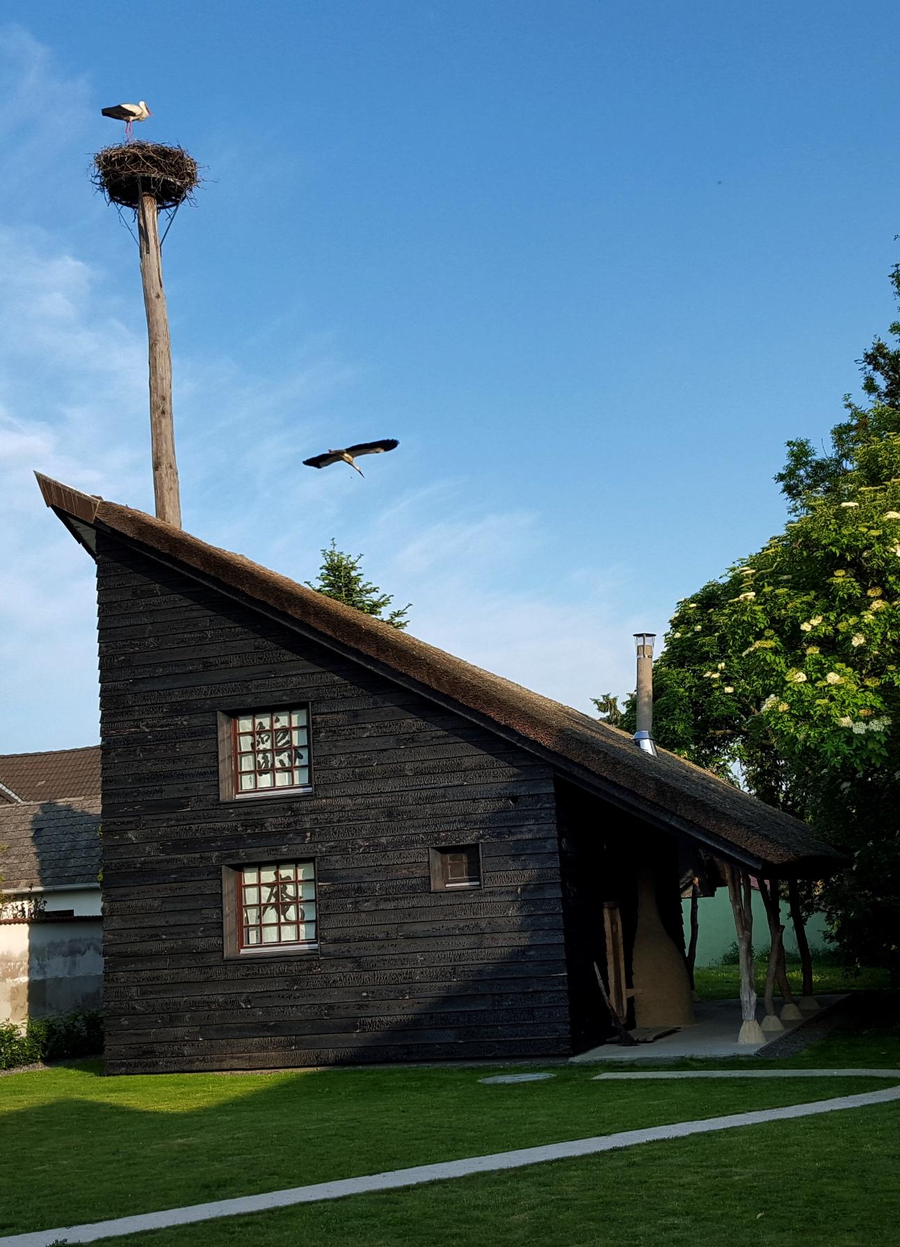 Storkhouse Raidingfoundation